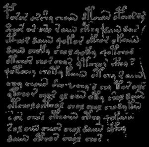 Textausschnitt aus dem Voynich Manuskript